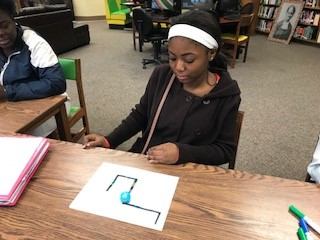 Hour of Code Single Student with Ozobot